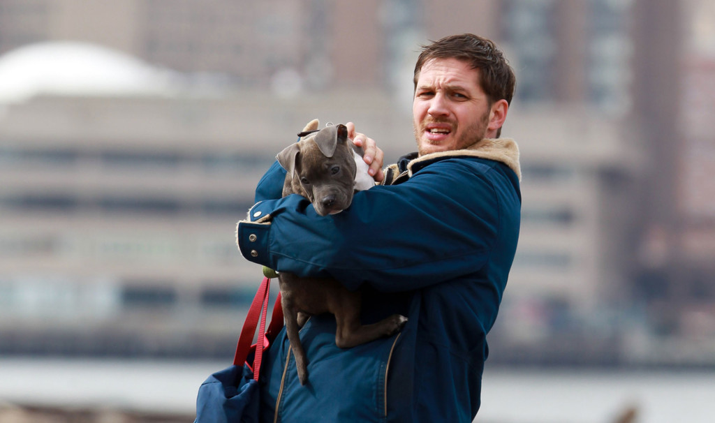 Cover-The-Drop-Petit-chien-avec-tom-hardy