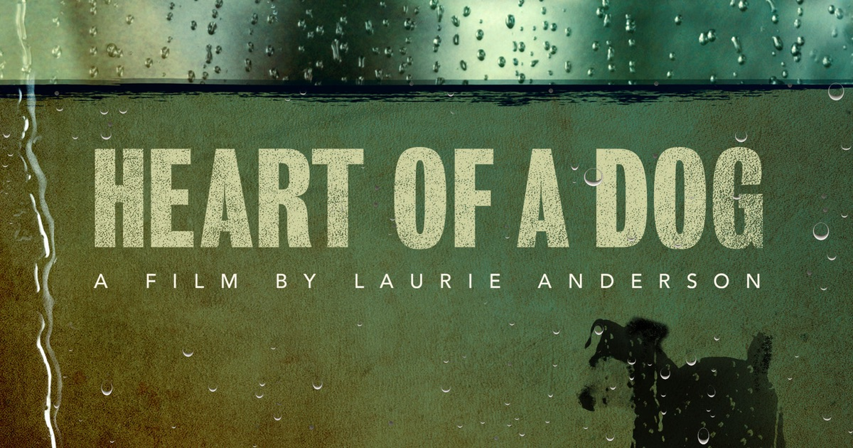 heart of a dog laurie andersson